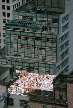 thomas hoepker(1936- ), usa. new york city. 1983. garbage on a midtown manhattan roof.