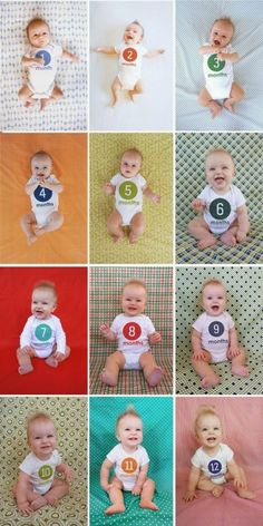 Focus on the background and have fun brightly colored fabric still using a number on the onesie like this idea from Laura Wifler. Monthly Baby Photo Ideas - Track Your Baby's Age in Photos plus FREE Monthly Printable Milestone Stickers and Signs on Frugal Coupon Living.