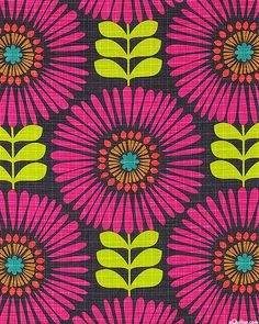 Hashmark - Fringe Flowers - Quilt Fabrics from www.eQuilter.com