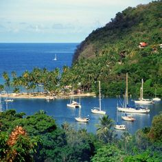 Marigot Bay is just south of St. Lucia's capital, Castries.