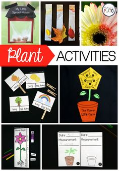 Looking for an Amazing Plant Pack? These 11 science activities and experiments are the perfect addition to any preschool, kindergarten and first grade plant unit this spring! First Grade Activities, Science Activities For Kids, Science Fair Projects, Spring Activities, Science Experiments Kids, Preschool Activities, Preschool Kindergarten, Science Centers, Playdough To Plato
