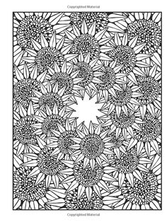 Dover Publications / Creative Haven Nature Fractals Coloring Book / Mary Agredo and Javier Agredo / Amazon.com