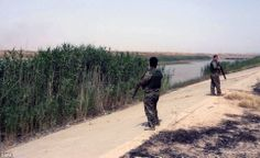 Kurdistan's Peshmerga soldiers secure an area in Kirkuk city - the move was a victory for ...