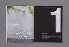Amazing Magazine Layout Design Idea (108)