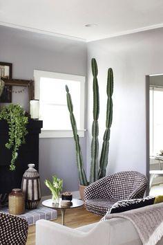 cactus en interior…diseñar maceta cilindrica con mango q sostenga los brazos al crecer…en negro