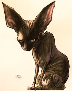 "P the Black Sphynx: ""Basic"" Custom Illustration. – JohnLaFree.com"