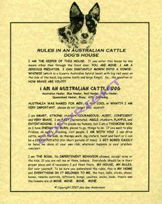 Australian Cattle Dog Rules.  Blue Heelers. LOL...EVERY WORD...SO TRUE!