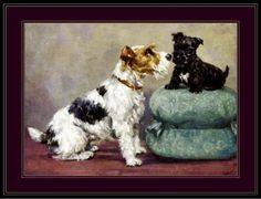 English-Print-Wire-Fox-Terrier-Puppy-Dog-Art-Picture