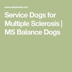 Service Dogs for Multiple Sclerosis | MS Balance Dogs
