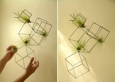 Fun idea to use these cubes with Thigmotrope Satellite.