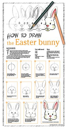 how to draw an easter bunny face