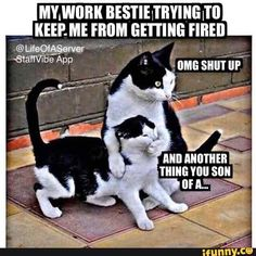 usually I'm the one whose mouth is covered.🤦♀️🤷♀️ Best Picture For Humor jokes laughing For Your Taste You are looking for something, and it is going to tell you exactly what you are look Medical Humor, Nurse Humor, Pharmacy Humor, Funny Relatable Memes, Funny Jokes, Funny Work Humor, Hilarious Work Memes, Sarcastic Work Humor, Work Sarcasm