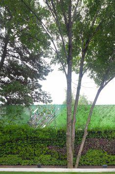 Al final de este jardín rematamos visualmente con yn muro verde que da textura, color y profundidad a un jardín plano.