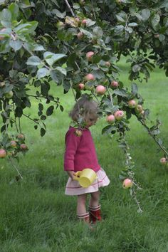 words and photography by Inger Marie Hahn Møller It's no secret that we love summer. Ohh, yes, those long days at Apple Farm, Dragons, Apple Harvest, Country Life, Country Living, Red Apple, Rustic Charm, Pin Image, My Childhood