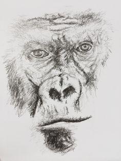 Gorilla sketch Face Portrait Pencil