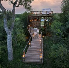 Get in touch with nature in the most lavish way possible by staying in one of these extravagant tree houses at Lion Sands Game Reserve