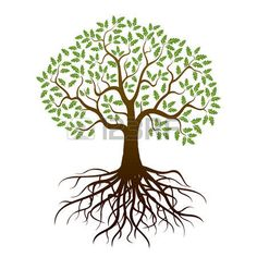 Tree Vector Stock Photos Images, Royalty Free Tree Vector Images ...