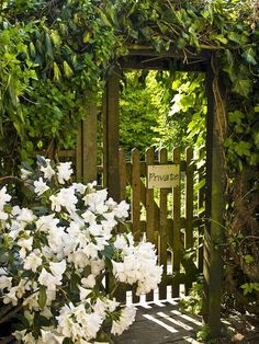 GATE A white Rhododendron, 'Chinoides White,' billows across the entry into a private garden.A white Rhododendron, 'Chinoides White,' billows across the entry into a private garden. Garden Doors, Garden Gates, Garden Entrance, Entrance Doors, Moon Garden, Dream Garden, Portal, Entrance Design, My Secret Garden