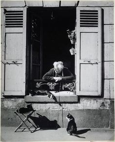 Concierge with Cats Paris cat photography by Brassai - aka Gyula Halasz Andre Kertesz, Vintage Paris, Vintage Cat, Vintage Photography, Street Photography, Cat Photography, Fashion Photography, Chat Paris, Paris Cat