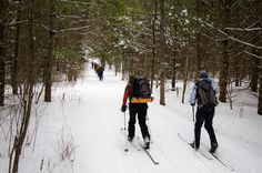 Spend the day in Stowe's most pristine backcountry on a full day epic ski adventure. Umiak's certified backcountry guide will teach their tricks of the trade in Outdoor Outfitters, Ski Touring, State Art, Vermont, Skiing, Tours, Adventure, Travel, Ski