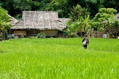Turismo y viajes Tailandia