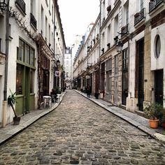 #paris #architecture  brown, gray, muted, green