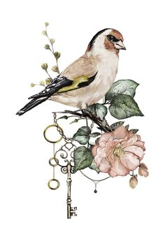 """Photo from album """"Картинки"""" on Yandex. Watercolor Flowers, Watercolor Paintings, Temporary Tattoo Designs, Kunst Poster, Bird Illustration, Grafik Design, Bird Art, Vintage Flowers, Illustrations Posters"""