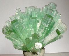 """Elbaite Locality: Dara-i-Pech pegmatite field , Chapa Dara District, Konar Province (Kunar Province; Konarh Province; Konarha Province; Nuristan), Afghanistan Dimensions: 3.6 cm x 3 cm x 2.8 cm  3.6 x 3.0 x 2.8 cm. """"A SUPERB and AESTHETIC SPRAY of gemmy and lustrous light green tourmaline crystals from Pech, Afghanistan. SELDOM do you see pristine tourmaline sprays, such as this, from ANYWHERE, available! A KILLER miniature."""" Ex. Thompson miniatures collection."""
