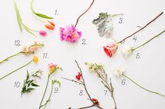 Flower_Arranging_001_with-numbers