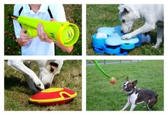 12 Simple Solutions To Tire Out Your High Energy Dog