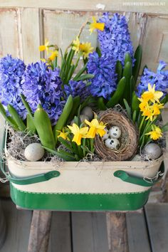 Vintage Metal Picnic Basket as spring planter filled with daffodils, hyacinths, bird's nest, moss and eggs   homeiswheretheboatis.net