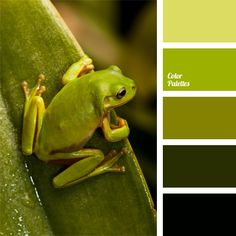 Great collection of Warm Palettes with different shades. Color ideas for home, bedroom, kitchen, wall, living room, bathroom, wedding decoration | Page 90 of 95.