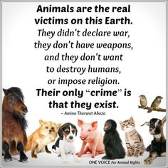 One Voice for Animal Rights !!