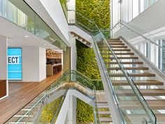 Nixon Peabody Law office Washington DC wall of plants