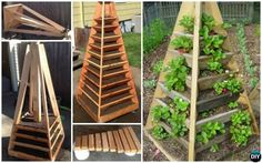 DIY Vertical Pyramid Tower Garden Planter