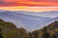HearthSide Cabin Rentals reveals the top 7 places families can see the Smoky Mountains fall colors this year. Gatlinburg Vacation, Gatlinburg Tennessee, Gatlinburg Cabins, Tennessee Vacation, Tennessee Usa, Grand Teton National, Smoky Mountain National Park, Yellowstone National Park, National Parks