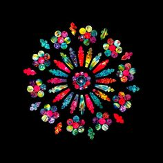 West Rose Window by Sylvia Pippen