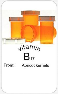 Apricot kernels contain a toxic chemical known as amygdalin (or vitamin B17). In the body this chemical is converted to cyanide, which is poisonous. Despite serious safety concerns, apricot kernel has been used for treating cancer. It is taken by mouth or given as an injection.