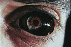 New dark art horror demons eyes 37 ideas Story Inspiration, Character Inspiration, Writing Inspiration, Evelynn League Of Legends, Demon Aesthetic, Gothic Aesthetic, Aesthetic Black, Remy Lebeau, Demon Eyes
