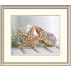 Global Gallery 'Cali Starfish II' by Gaetano Framed Photographic Print Size: