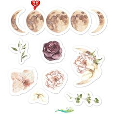 hydroflaskstickers Watercolor Flower stickers, Celestial Moon cycle Bullet Journal, Planner stickers set, Water Bottle MacBook Laptop Floral Stickers   - Our Stickers ! #stickers #tickerstumblr #stickerslaptop #funnystickers<br>