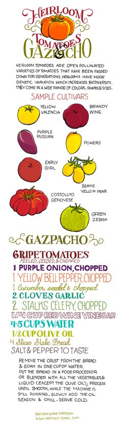 tomatoes  Illustrated Bites by Heather Diane