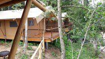 """Safari Kemp - Zoo Dvůr Králové - Glamping - Ubytování v luxusních stanech v """"korunách stromů"""""""