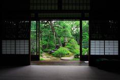 大橋家庭園「苔涼庭」の画像:京都写真(Kyoto Photo)