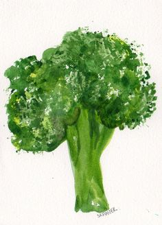 Broccoli Painting watercolor Vegetable Series 4 by SharonFosterArt, $8.50