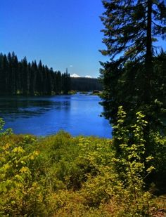 Clear Lake (Sisters, OR) on TripAdvisor: Address, Reviews