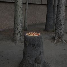 Jonpaul Douglass Photography Pizza in the Wild<--- geniaal 😂