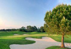 Golf Son Antem