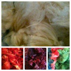 Dyeing wool locks