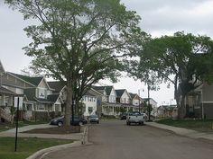 Preserved Street Trees #yegDNN